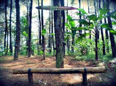 Bukit_Becici (2)