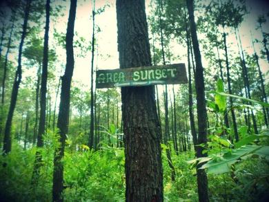 Bukit_Becici (8)