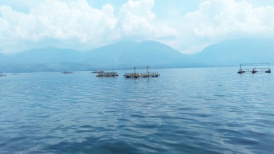 Danau Singkarak (3)