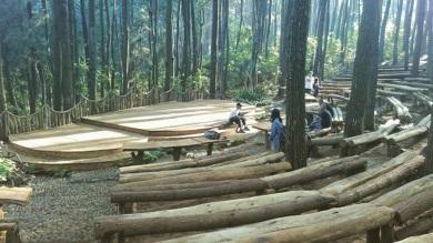 Hutan Pinus Mangunan 2016 (2)