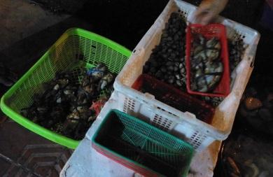 Warung Seafood Mbak Devi (2)